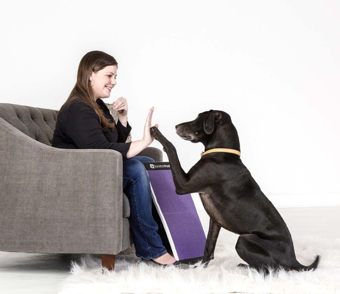 ScratchPad for Dogs