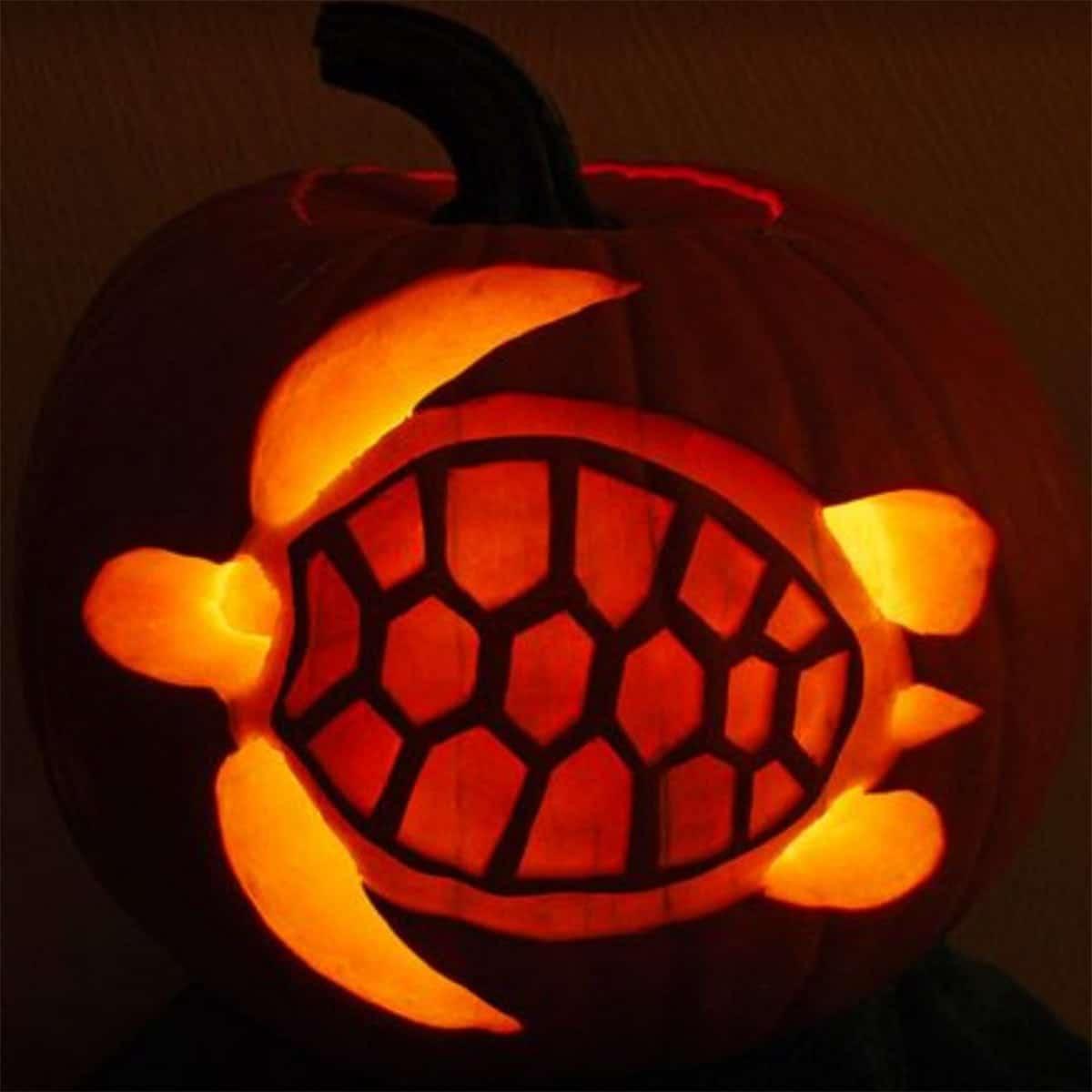 turtle pumpkin carving